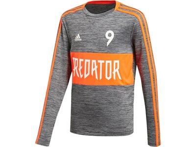 ADIDAS Kinder Sweatshirt Predator Grau