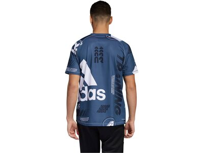 "ADIDAS Herren Trainingsshirt ""FreeLift Daily Print"" Kurzarm Grau"