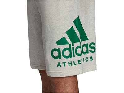"ADIDAS Herren Trainingsshorts ""SID Athletics Logo"" Grün"