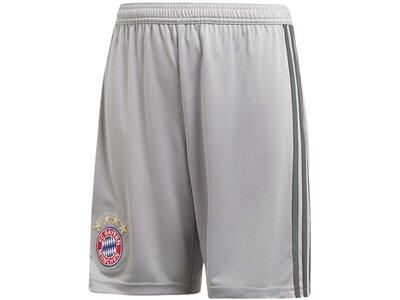 ADIDAS Replicas - Trikots - National FC Bayern München TW-Short Home Kids 18/19 Grau