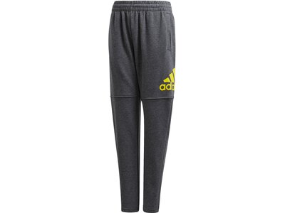 "ADIDAS Jungen Trainingshose ""Essentials Logo"" Grau"
