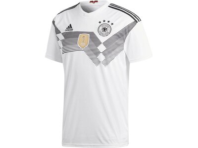 ADIDAS Herren Fußballtrikot DFB Home Trikot WM 2018 Grau