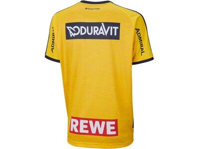 "PUMA Kinder Handballtrikot ""RNL Home Shirt Jr."" Kurzarm Gelb"