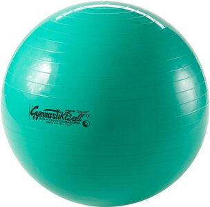 017749cbae8cf Intersport Gymnastikball Pezzi 65cm Gymnastikbälle