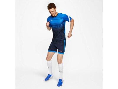 "NIKE Herren Fußball Shirt Kurzarm ""Dri-Fit Academy"" Braun"