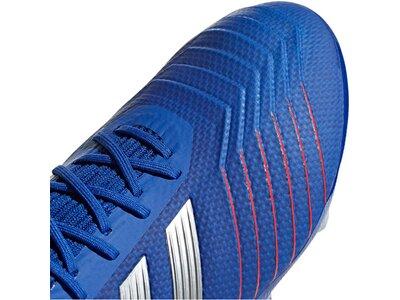 ADIDAS Herren Fußballschuhe Predator 19.2 FG Blau