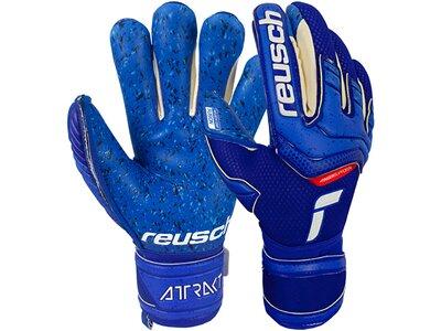 REUSCH Equipment - Torwarthandschuhe Attrakt Fusion TW-Handschuh Blau