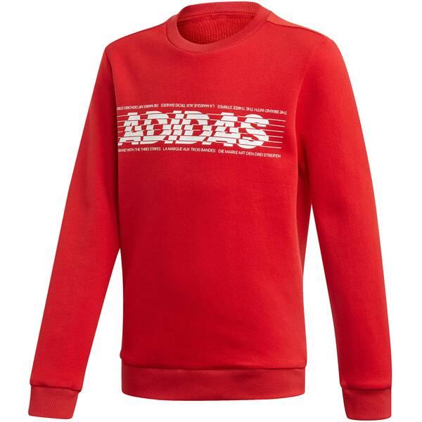 """ADIDAS Jungen Sweatshirt """"YB Sid BR Crew 2"""""""