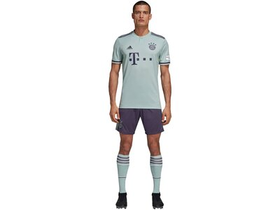 "ADIDAS Herren Auswärtstrikot ""FC Bayern Away Saison 2018/2019"" Weiß"