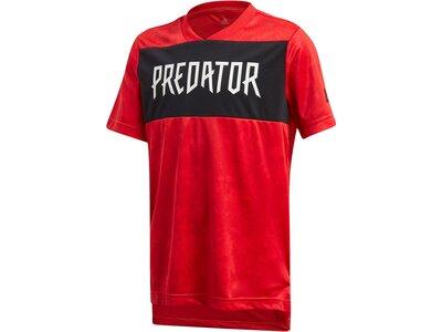 """ADIDAS Jungen T-Shirt """"Predator"""" Rot"""