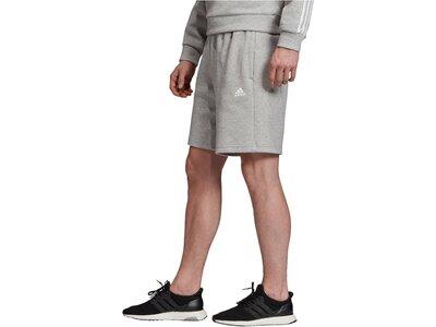 ADIDAS Herren Shorts Grau