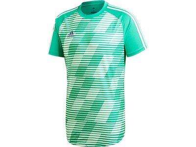 ADIDAS Fußball - Textilien - T-Shirts Tango Graphic Jersey Trikot Grün
