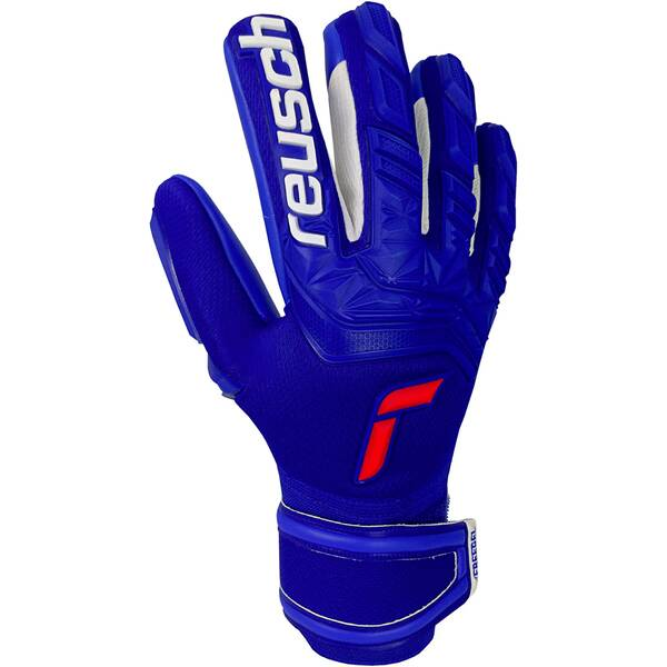 REUSCH Equipment - Torwarthandschuhe Attrakt Freegel TW-Handschuh
