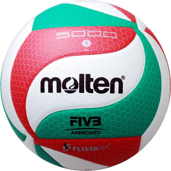 Volleyball Flistatec