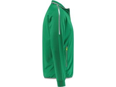 DUNLOP Herren Tennis-Jacke Grün