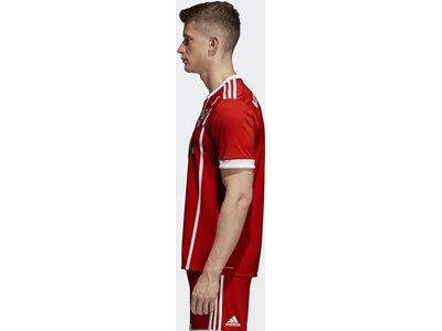 ADIDAS Herren FC Bayern München Heimtrikot Rot