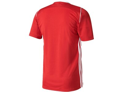 "ADIDAS Kinder Fußballshirt / Trikot ""Tiro 17 Jersey"" Weiß"