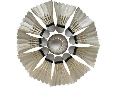 PROTOUCH Badmintonbälle Tec 50 Weiß