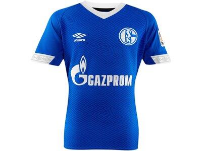"UMBRO Herren Fußballtrikot ""18/19 FC Schalke 04 Home"" Kurzarm Blau"
