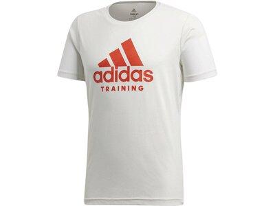ADIDAS Herren Trainingsshirt Freelift Logo Grau