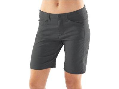 "ICEBREAKER Damen Shorts ""Persist"" Grau"