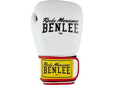 BENLEE Boxhandschuhe aus Leder DRACO Weiß