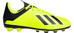 Vorschau: ADIDAS Kinder Fußballschuhe X 18.4 FxG