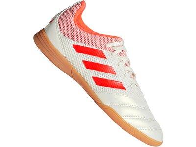 ADIDAS Fußball - Schuhe Kinder - Halle COPA Hard Wired 19.3 IN Sala Kids Grau