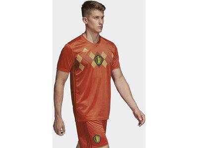 ADIDAS Herren Belgien Heimtrikot Rot