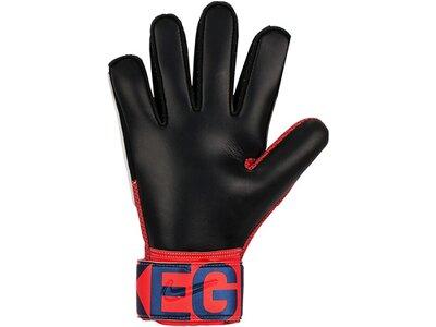 NIKE Herren Handschuhe GK MATCH-FA19 Rot