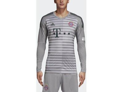 ADIDAS Herren FC Bayern München Torwarttrikot Grau