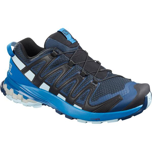 "SALOMON Herren Walkingschuhe ""XA Pro 3D V8"""