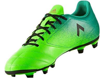ADIDAS Herren Fußballschuhe Ace 17.4 FxG Grün