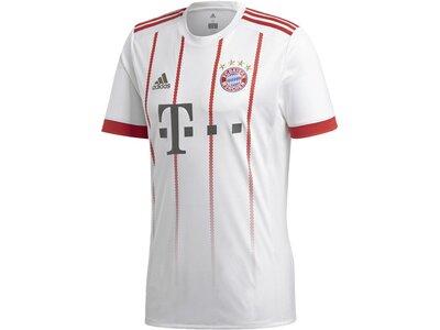 ADIDAS Herren FC Bayern München UCL Trikot Grau