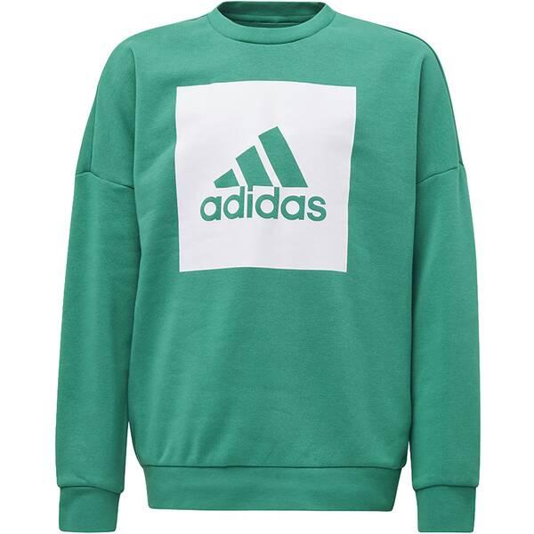 ADIDAS Kinder Essentials Big Logo Sweatshirt