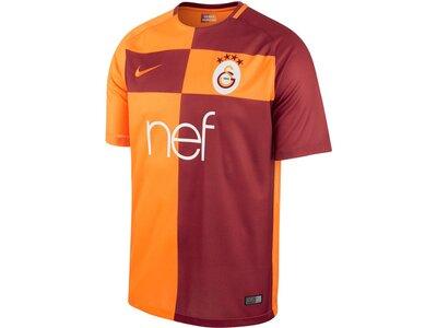 NIKE Herren Fußballtrikot Galatasaray S.K.Home Saison 2017/2018 Rot