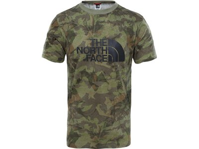 THE NORTH FACE Herren T-Shirt Easy Tee Grün