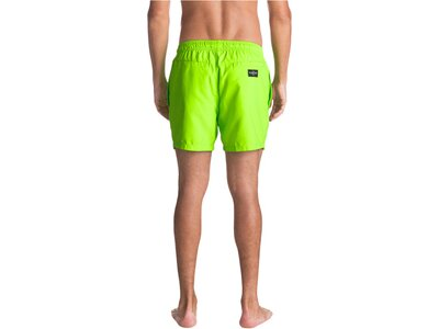 QUICKSILVER Herren Strand-Shorts Everyday 15 Grün