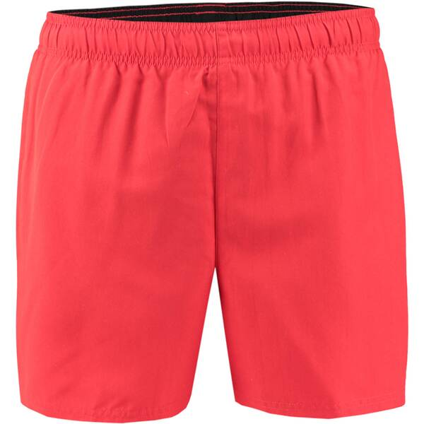 NIKE Herren Badeshorts Volley Short