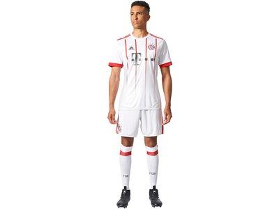 ADIDAS Herren Fußballshorts FC Bayern München UCL Saison 2017/18 Grau