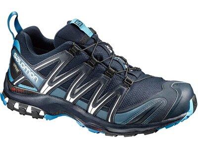 SALOMON Herren Schuhe XA PRO 3D GTX® Navy B Grau