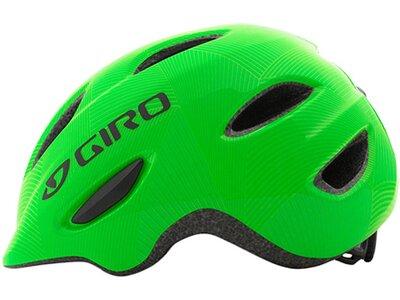 GIRO Kinder Fahrradhelm Scamp Grün
